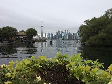 Skyline of Toronto from Toronto Islands