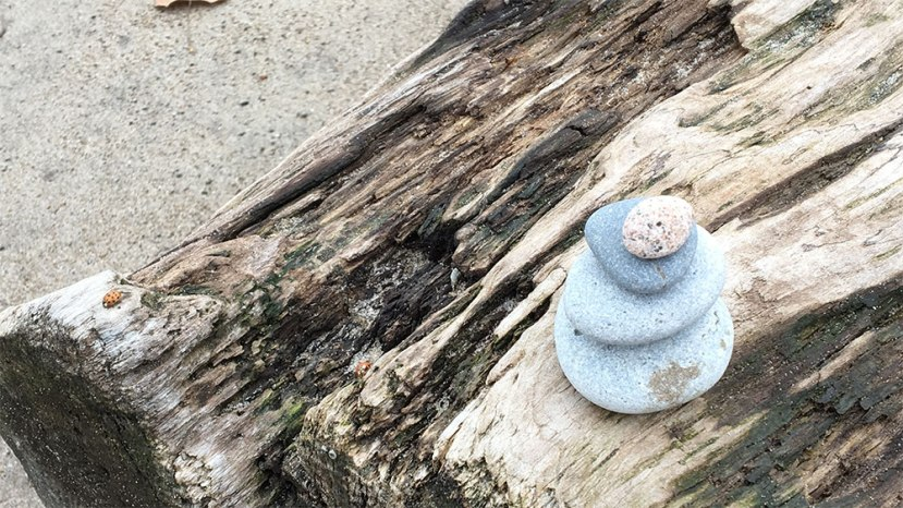 Rock sculpture on a log on the beach