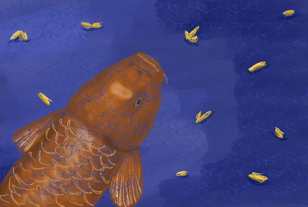 Digital painting of a koi fish
